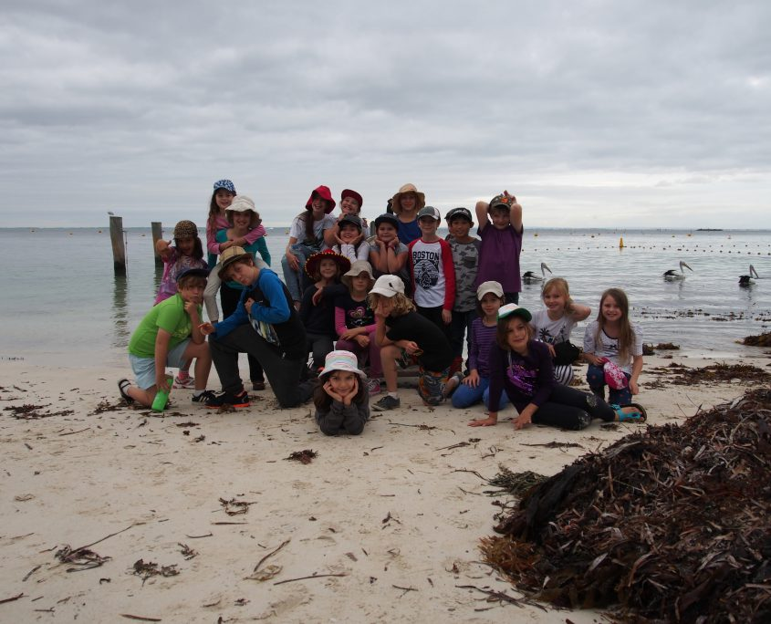 at a beach in rottnest