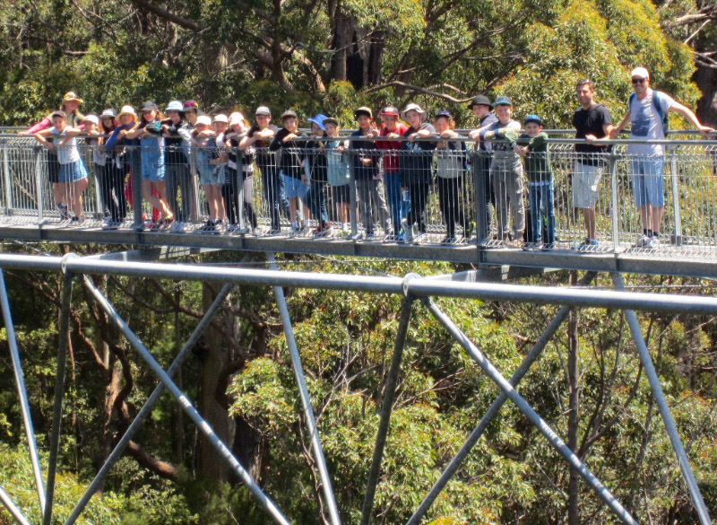 Year 5 and 6 students on Albany camp