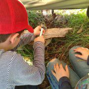 Using hammer at Bush School