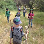 walking at Bush School