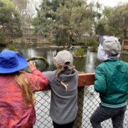 Students at zoo